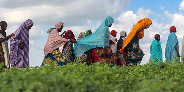 Women walking in a field